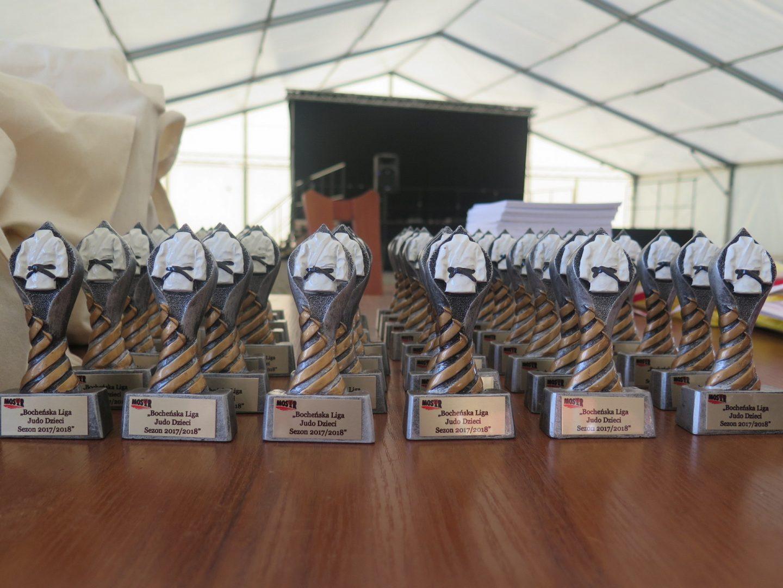 Zakończenie i Podsumowanie sezonu judo – nagrody i podziękowania wręczone.